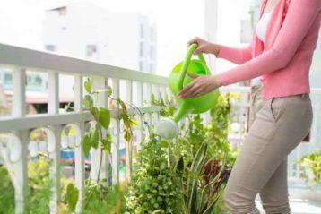 Bonus Verde su Terrazze e giardini: ecco il rinnovo sconto fiscale